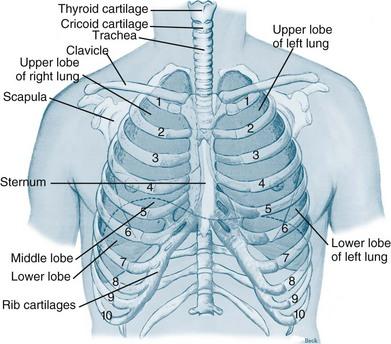 Respiratory Assessment and Monitoring | Nurse Key