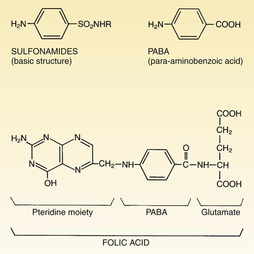 Para aminobenzoic acid benefits