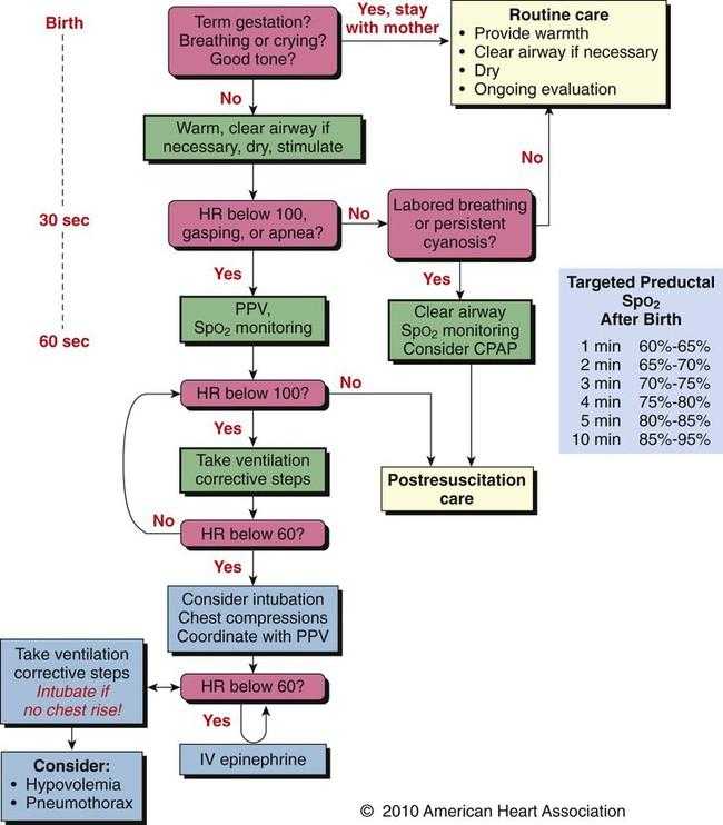 neonatal hypoglycemia guidelines 2017 pdf