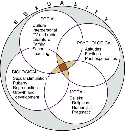 FIGURE 21-2 Interrelationship of dimensions of sexuality.