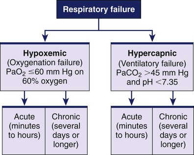 nursing management: respiratory failure and acute respiratory, Skeleton