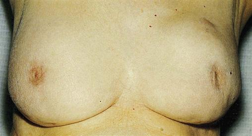 kate winslet hot boob