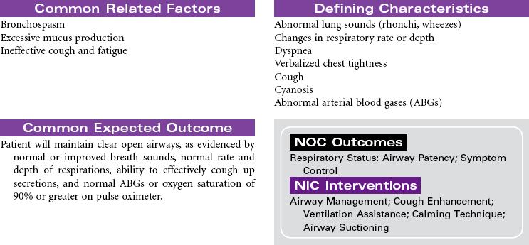 Pulmonary Care Plans   Nurse Key