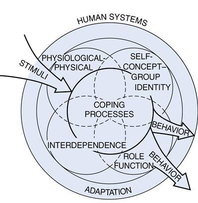 Roy adaptation model nursing