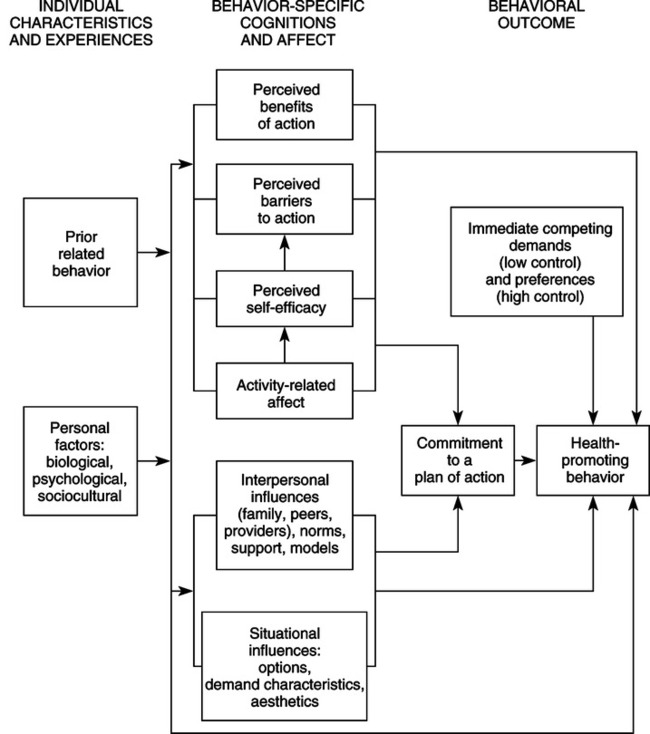 nola pender health promotion model Health belief model in nursing: definition, theory & examples  dr nola  pender developed the health promotion model (hpm) that is used.