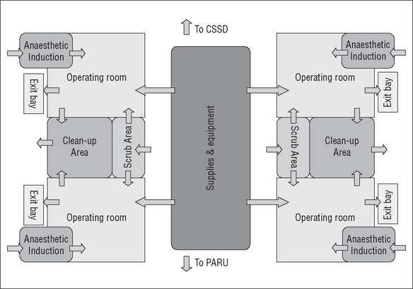 The Perioperative Environment on Veterinary Surgery Room Layout