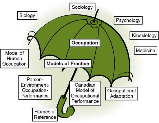 Models of Practice and Frames of Reference | Nurse Key