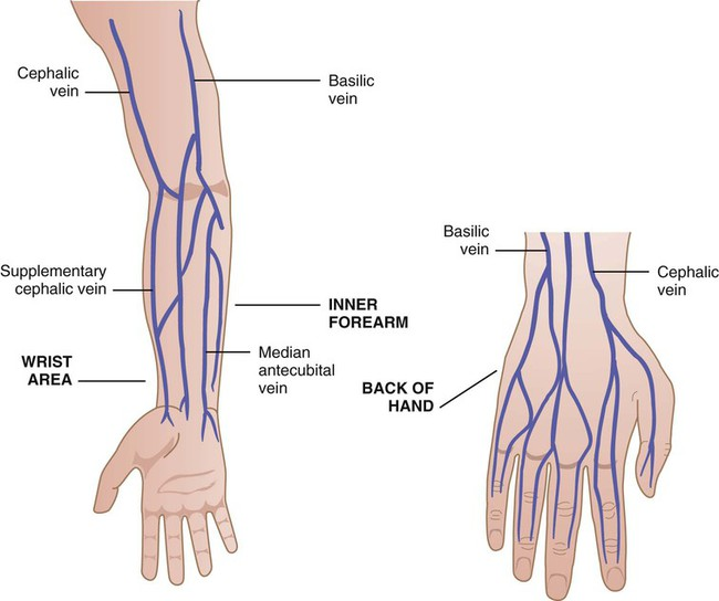 phlebotomy | nurse key, Cephalic Vein